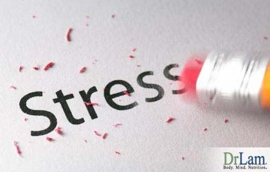 Stress Lam