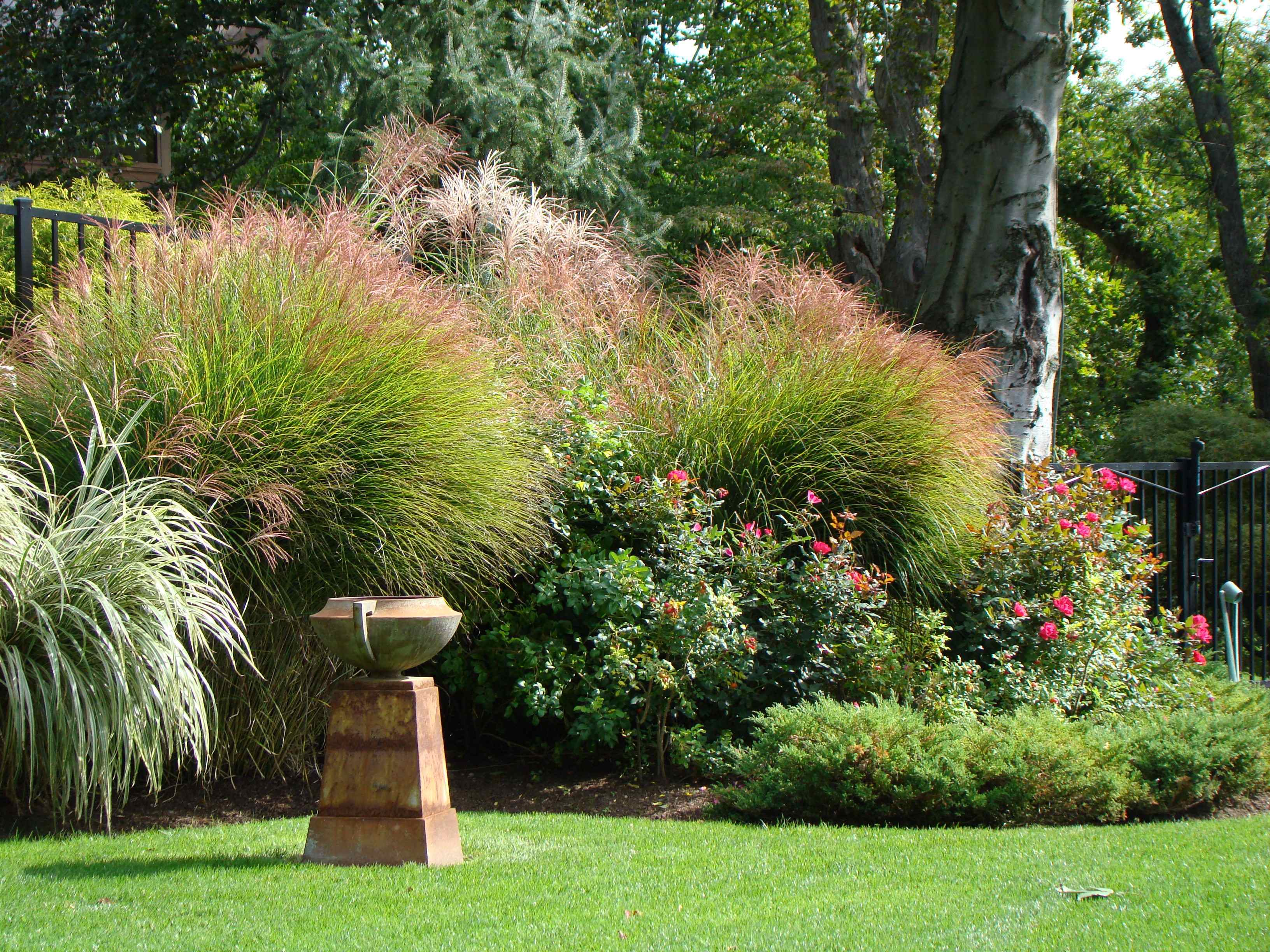 Top 3 Reasons You Should Hire a Professional Landscape Designer